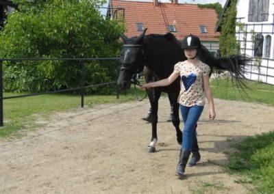 oboz-konie-2013-3-0015