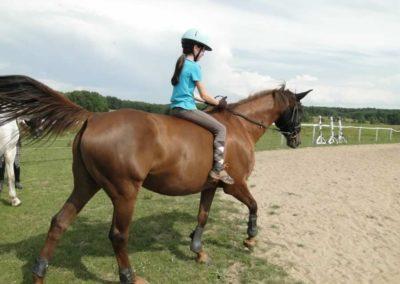 oboz-konie-2013-3-0018