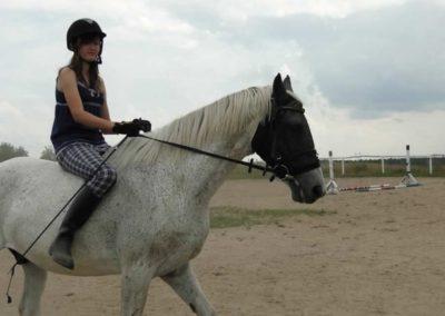oboz-konie-2013-3-0025