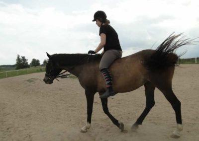 oboz-konie-2013-3-0027