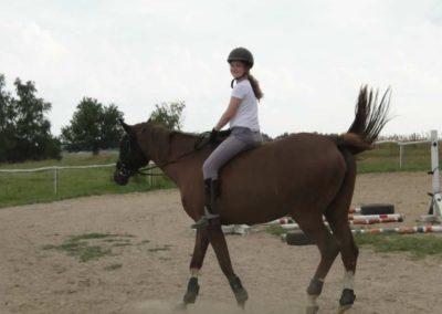 oboz-konie-2013-3-0028