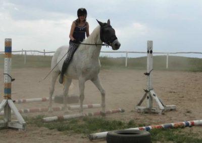 oboz-konie-2013-3-0029