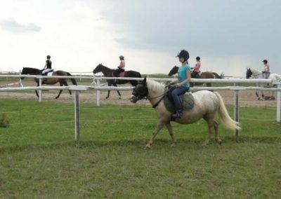 oboz-konie-2013-4-0027