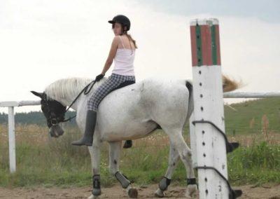 oboz-konie-2013-4-0029
