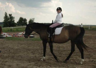 oboz-konie-2013-4-0031