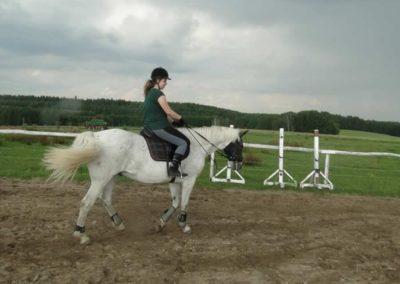 oboz-konie-2013-4-0032
