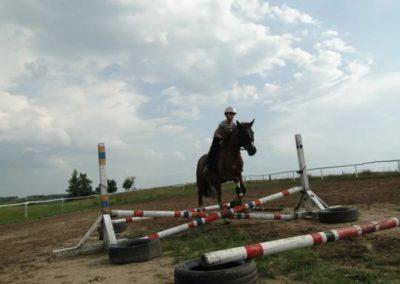 oboz-konie-2013-4-0034