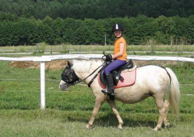oboz-konie-2013-5-0009