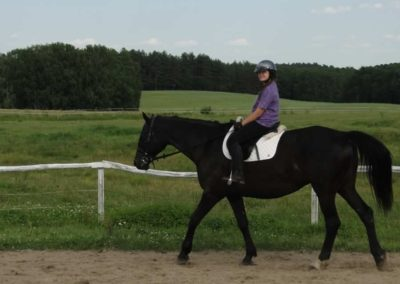 oboz-konie-2013-5-0014