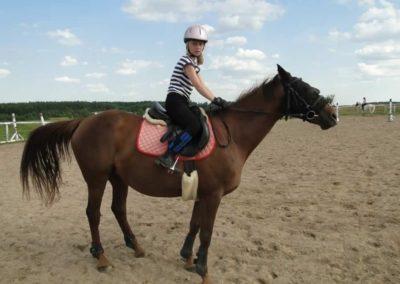 oboz-konie-2013-5-0016