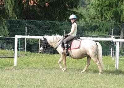 oboz-konie-2013-5-0018