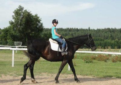 oboz-konie-2013-5-0020