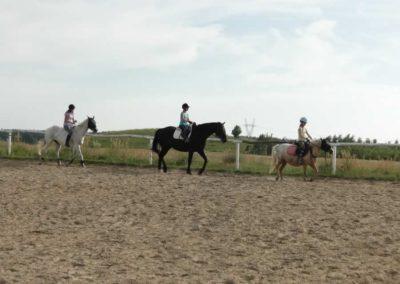 oboz-konie-2013-5-0022