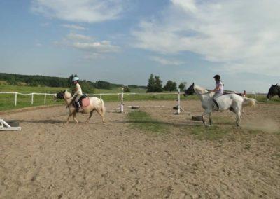 oboz-konie-2013-5-0023