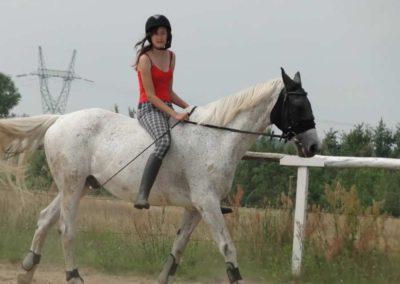 oboz-konie-2013-6-0008