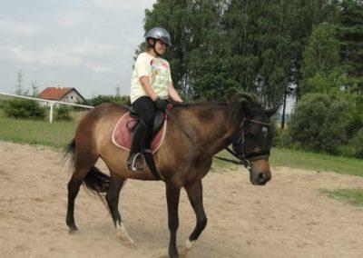 oboz-konie-2013-6-0009