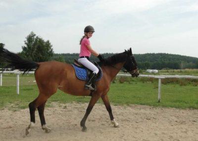 oboz-konie-2013-6-0010