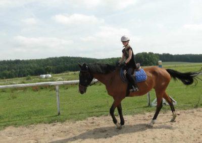 oboz-konie-2013-6-0011