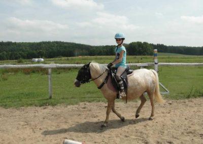oboz-konie-2013-6-0012