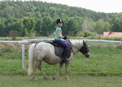 oboz-konie-2013-7-0002