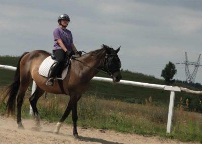 oboz-konie-2013-7-0003