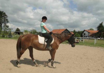 oboz-konie-2013-7-0006