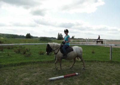 oboz-konie-2013-7-0007