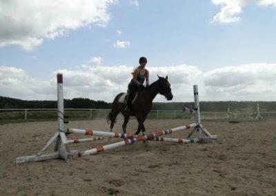oboz-konie-2013-7-0008