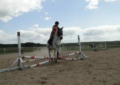 oboz-konie-2013-7-0009