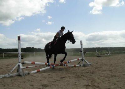 oboz-konie-2013-7-0010