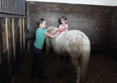 oboz-konie-2013-7-0016