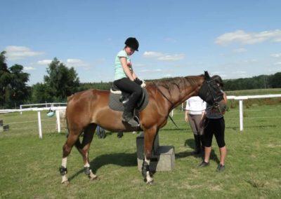 oboz-konie-2013-7-0019