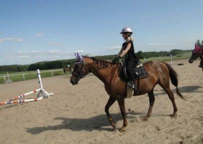 oboz-konie-2013-7-0020