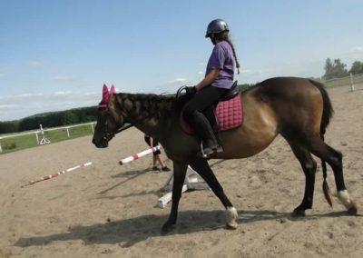 oboz-konie-2013-7-0021