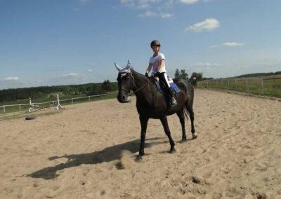 oboz-konie-2013-7-0022