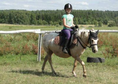 oboz-konie-2013-7-0025