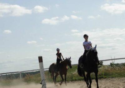 oboz-konie-2013-7-0031