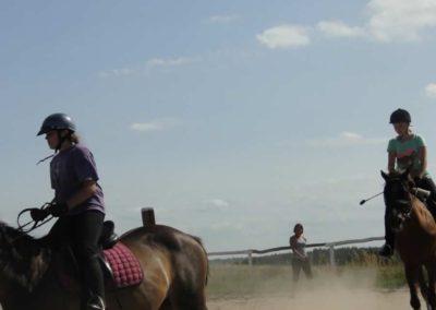 oboz-konie-2013-7-0032