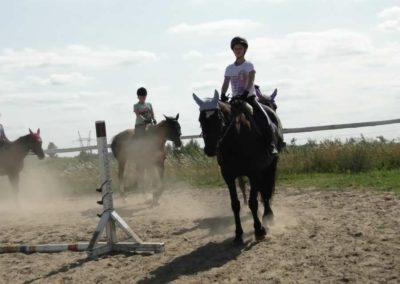 oboz-konie-2013-7-0034