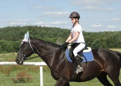 oboz-konie-2013-7-0036