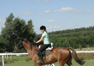 oboz-konie-2013-7-0038