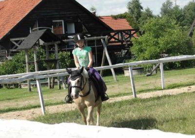 oboz-konie-2013-7-0042