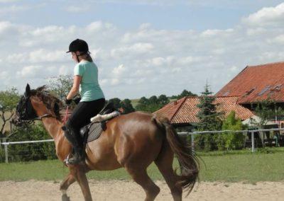 oboz-konie-2013-7-0048