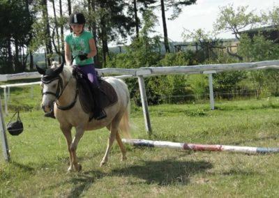 oboz-konie-2013-7-0050