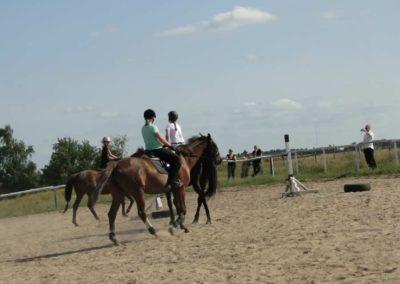 oboz-konie-2013-7-0053