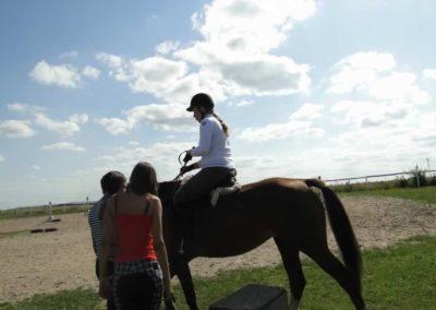 oboz-konie-2013-7-0056