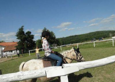 oboz-konie-2013-7-0057