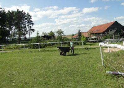 oboz-konie-2013-7-0060