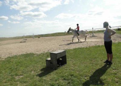 oboz-konie-2013-7-0062