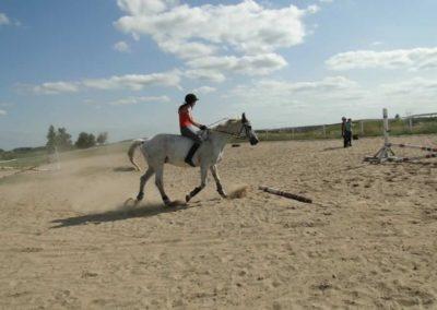 oboz-konie-2013-7-0066